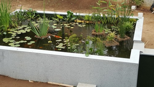 le bassin d albino portugal les naiades